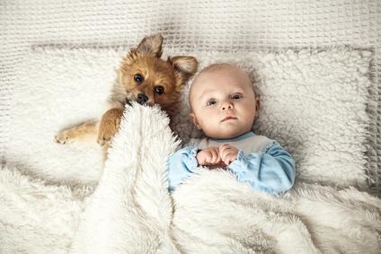 Baby schlft mit Welpe in einem Bett