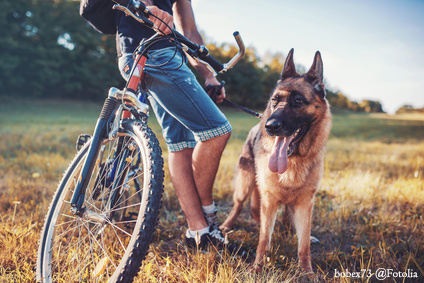 Dog owner with his pet in the park. Pets and animals concept